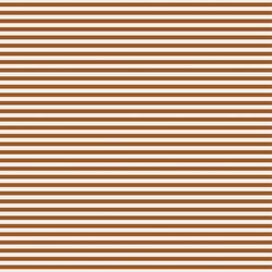 Stripe in Rust