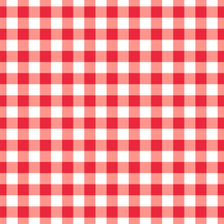Large Summer Gingham in Berry Red