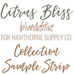 Citrus Bliss Sample Strip