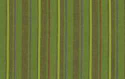 Alternating Stripe in Grass