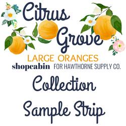 Citrus Grove Sample Strip Large Oranges