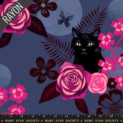 Magic Cat in Midnight