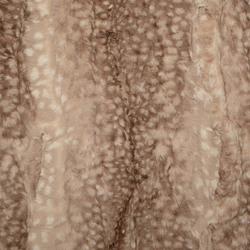 Fawn Snuggle in Fawn