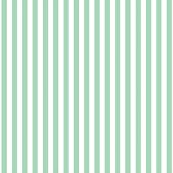 Dress Stripe in Seaglass