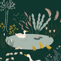 Ducks in Forest