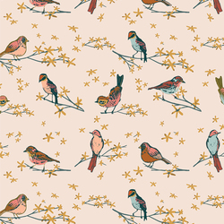 The Dawn Chorus in Songbird