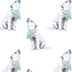 Arctic Wolf in White