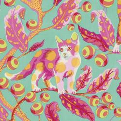 Disco Kitty in Strawberry Fields