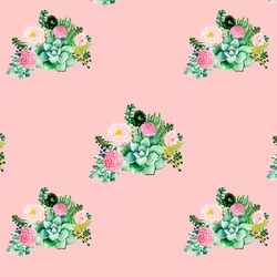 Small Floral Succulents in Pink Kiss