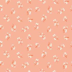 Blossom in Salmon