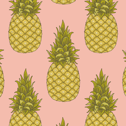 Pineapples in Fresh Pink