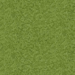 Grass in Bright Green