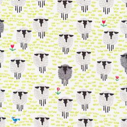 Sheep in Multi