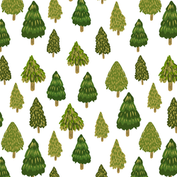 Forest in Pine