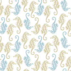 Seahorses in White