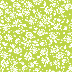 Daisies in Lime