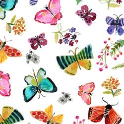 Butterflies in White