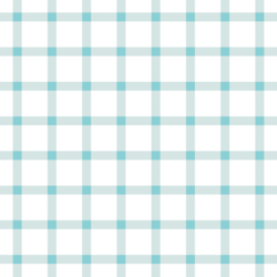 Summer Gingham Check in Raindrop