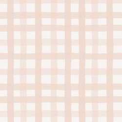 Gingham in Blush