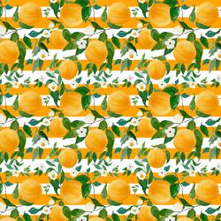 Small Oranges in Orange Stripes