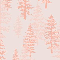 Mystical Woods in Solar