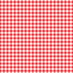 Summer Gingham in Berry Red