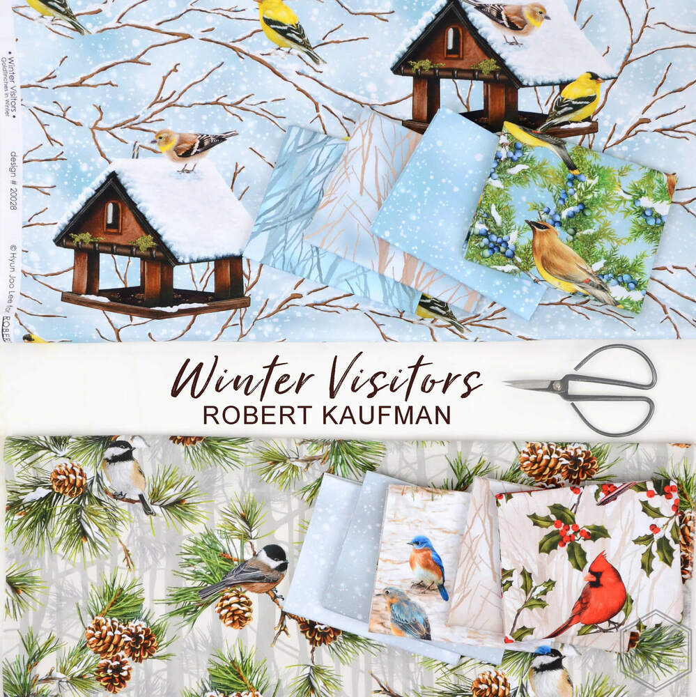 Winter Visitors Poster Image