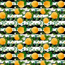 Small Oranges in Black Stripes