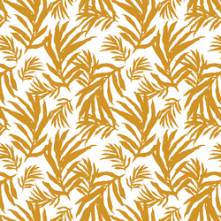 Large Palm Fronds in Golden Sun on White