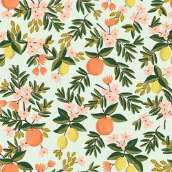 Citrus Floral in Mint