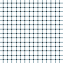 Summer Gingham Check in Blue