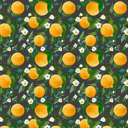 Small Oranges in Onyx