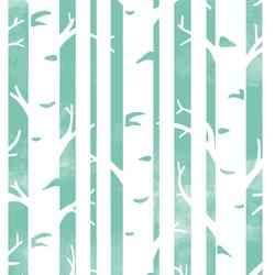 Big Birches in Succulent