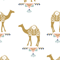 Camels in White