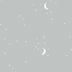 Moon and Stars in Gray