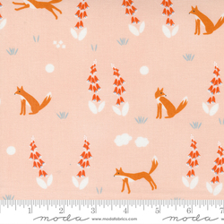 Foxes in Blush