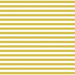 Meadow Stripe in Zesty Lime