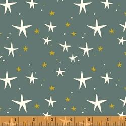 Starry in Dark