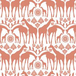 Giraffe Tribe in Desert Rose
