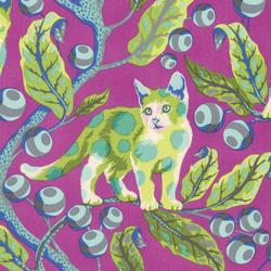 Disco Kitty in Berry Bird