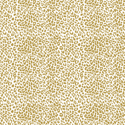 Small Leopard in Gold Glow on White