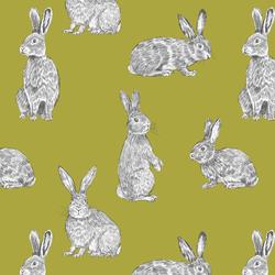 Bunny Hop in Zest