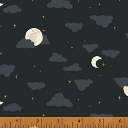 Moonlight in Night