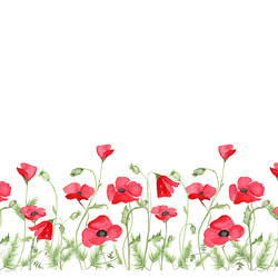 Poppy Fields Double Border in White
