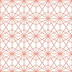 Terrarium in Grapefruit on White