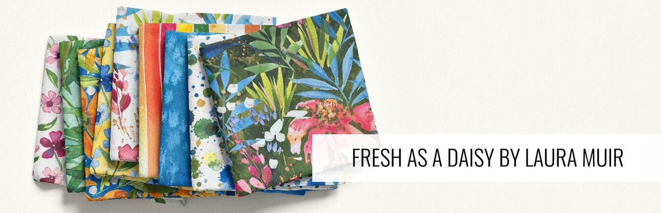Fresh as a Daisy by Laura Muir