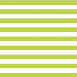 Horizontal Candy Stripe in Lime