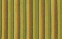 Multi Stripe in Lime