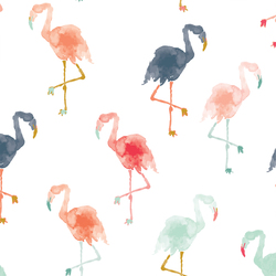 Flamingos in Summer