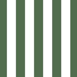 Play Stripe in Kale